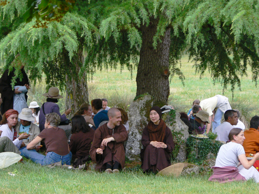 sangha picnic under trees at Plum Village