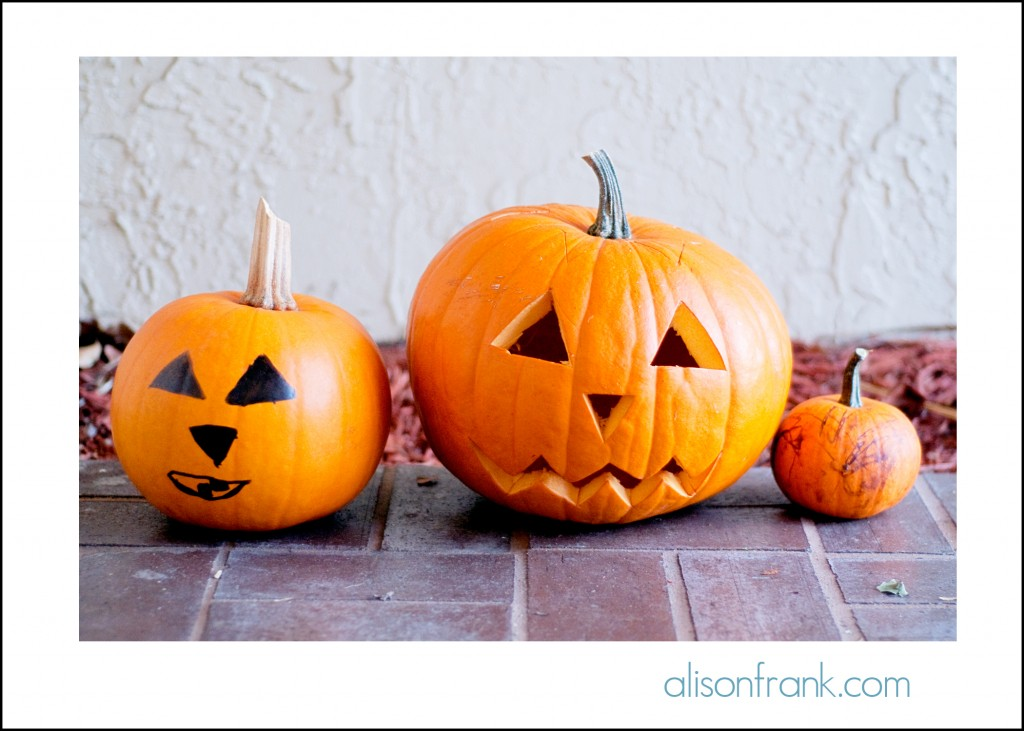 pumpkinsblog