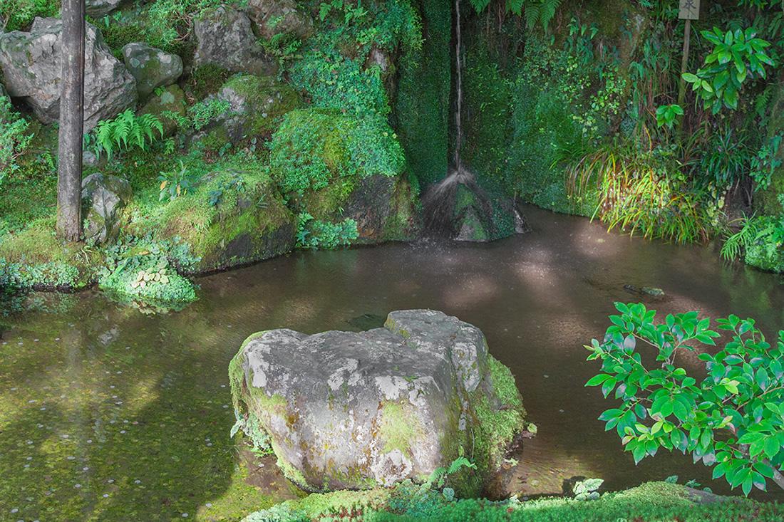Japan - Zen Garden in Kyoto - photograph by Mirena Rhee