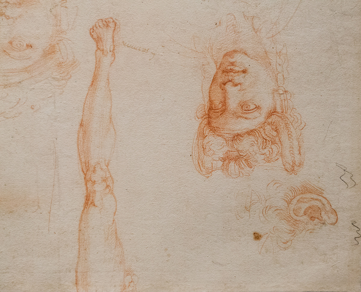 mirena-rhee-michelangelo-drawings-at-the-met_02