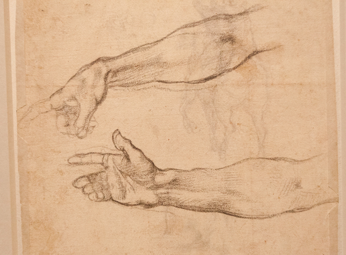 mirena-rhee-michelangelo-drawings-at-the-met_06