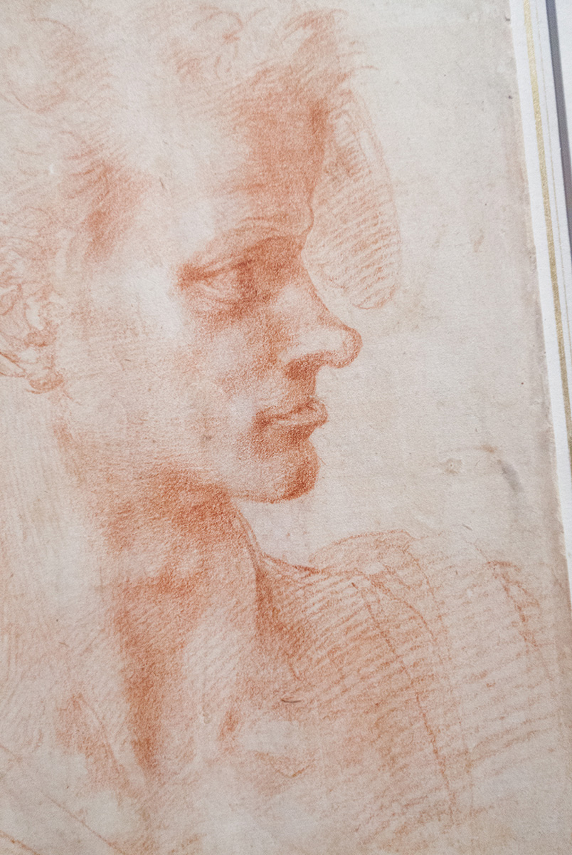 mirena-rhee-michelangelo-drawings-at-the-met_11