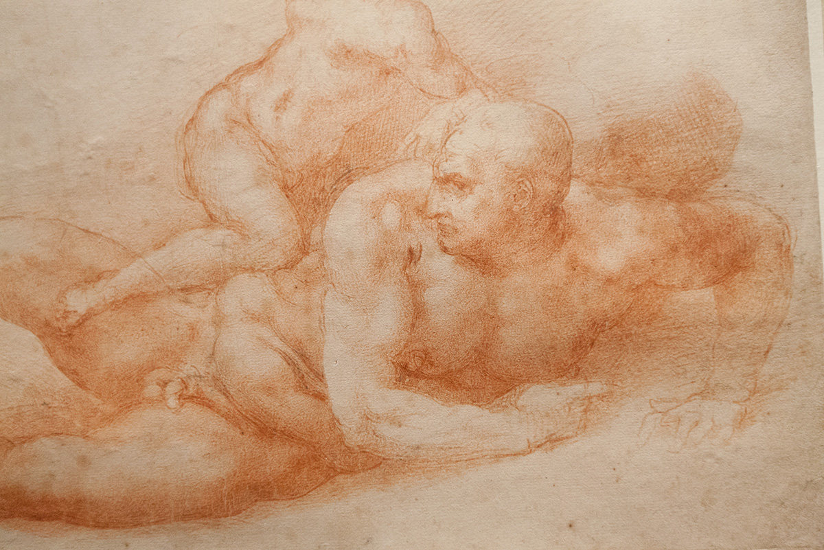 mirena-rhee-michelangelo-drawings-at-the-met_12