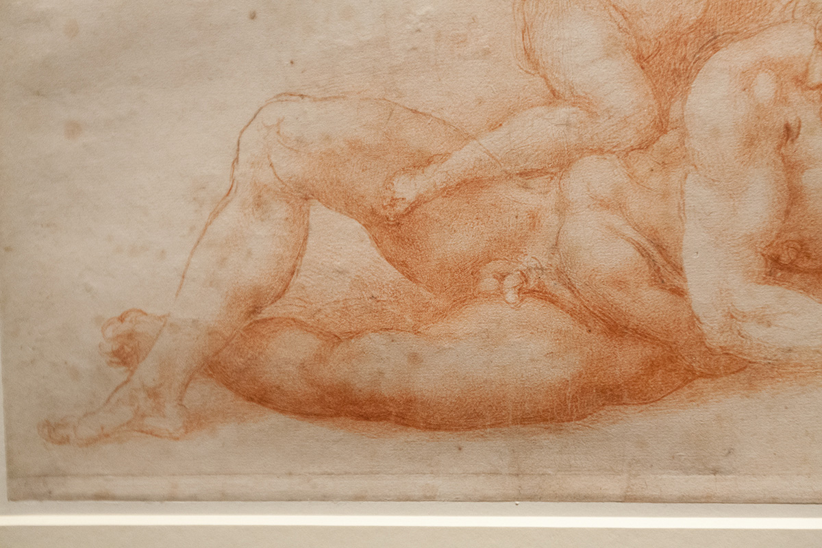 mirena-rhee-michelangelo-drawings-at-the-met_13