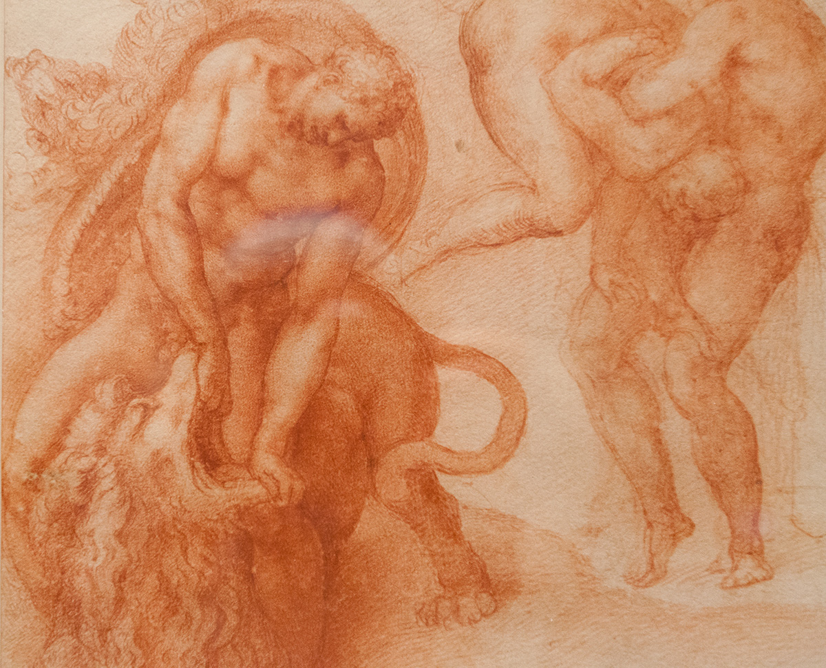 mirena-rhee-michelangelo-drawings-at-the-met_15