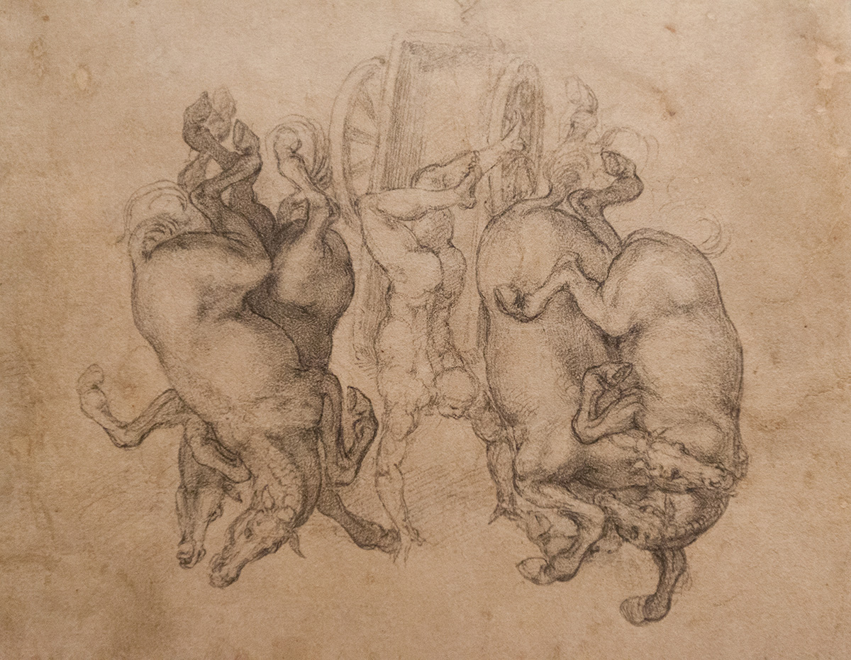 mirena-rhee-michelangelo-drawings-at-the-met_16
