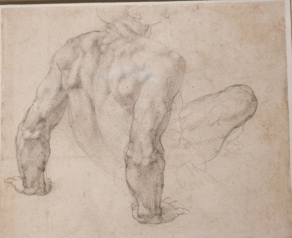mirena-rhee-michelangelo-drawings-at-the-met_29