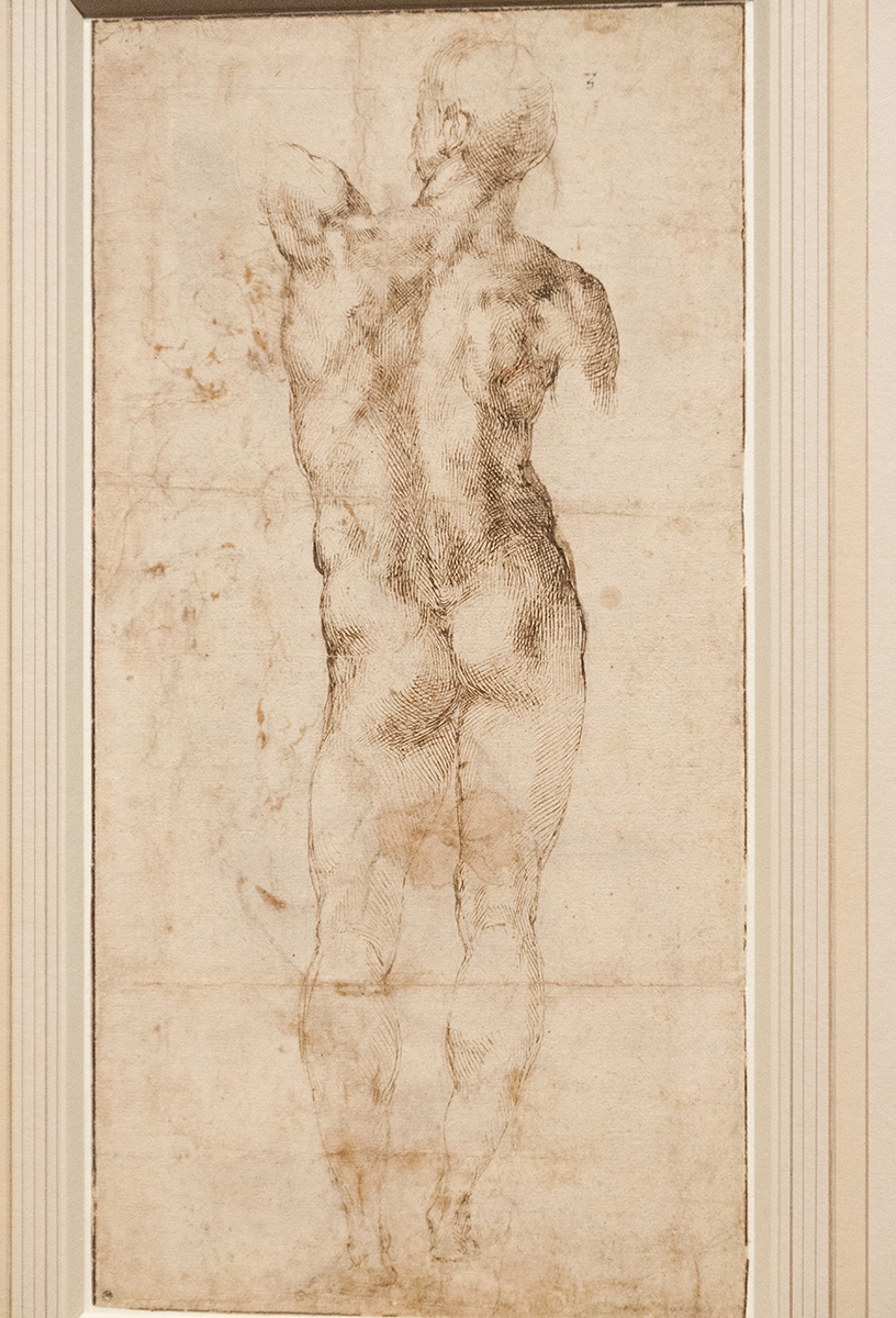 mirena-rhee-michelangelo-drawings-at-the-met_31