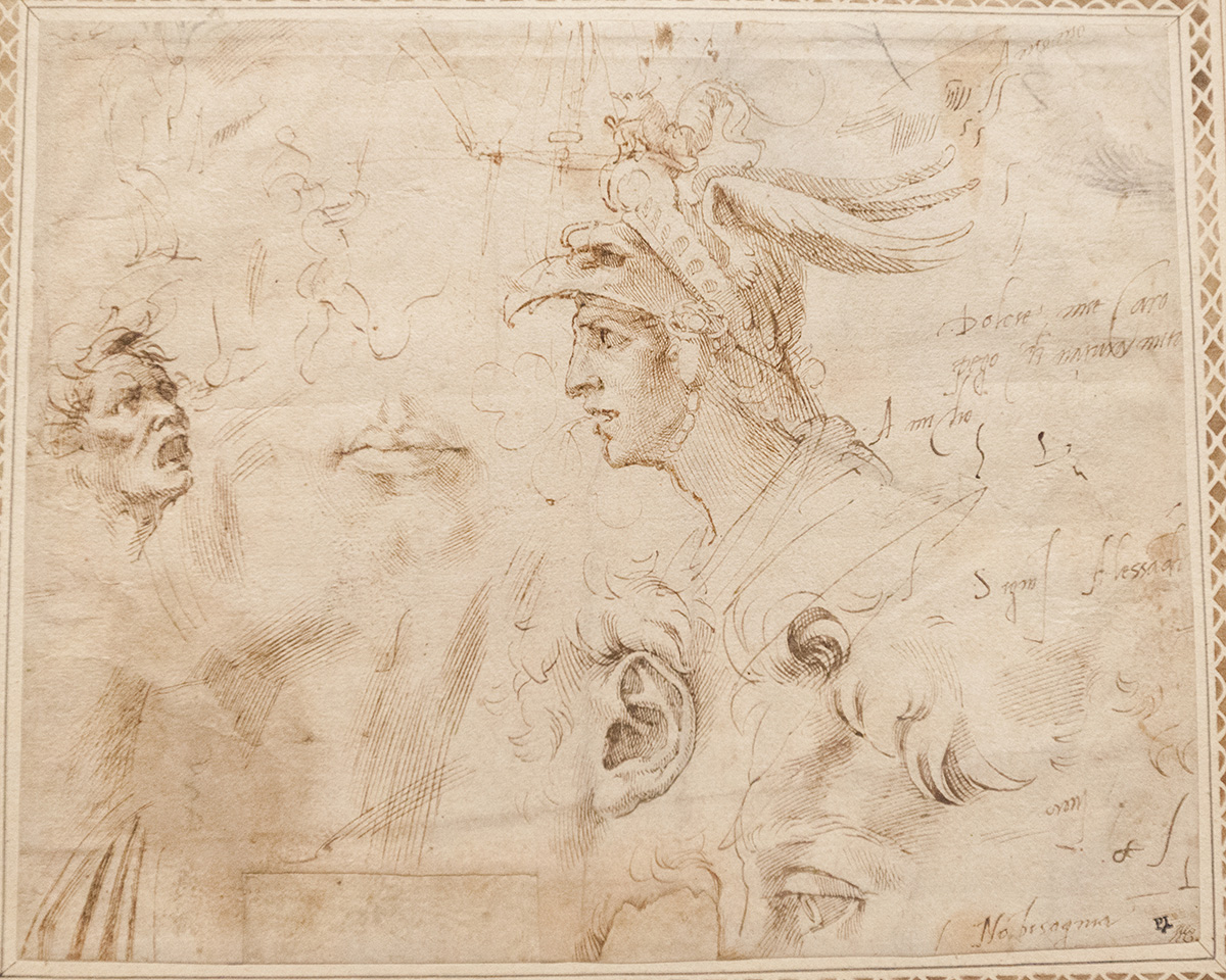 mirena-rhee-michelangelo-drawings-at-the-met_32