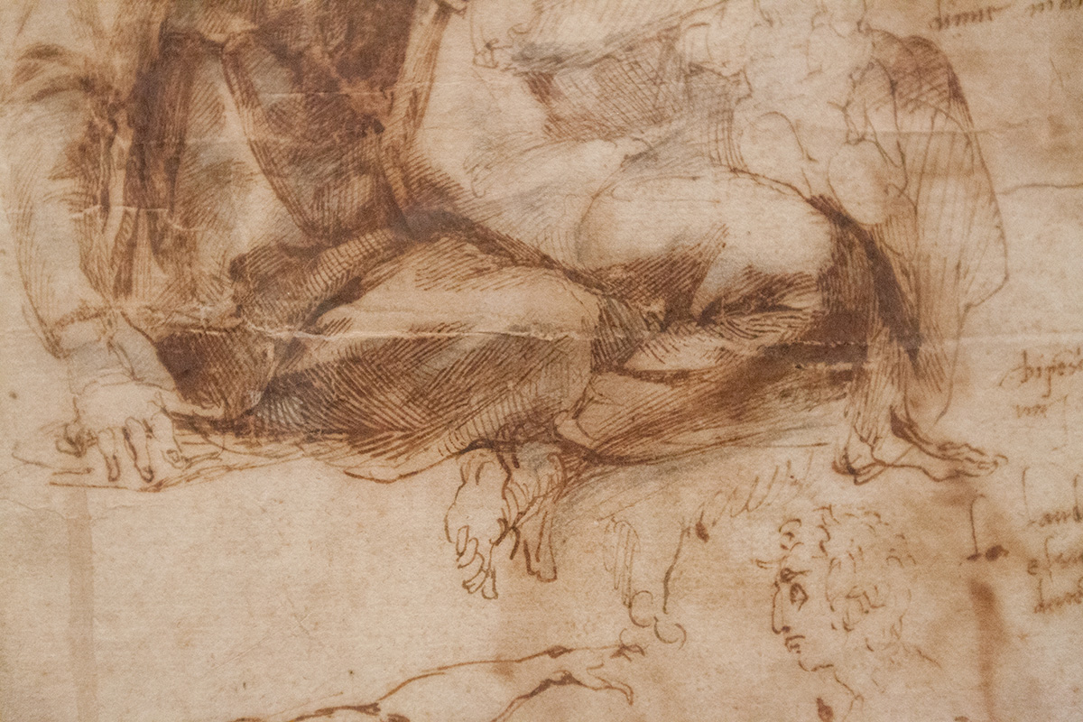 mirena-rhee-michelangelo-drawings-at-the-met_34