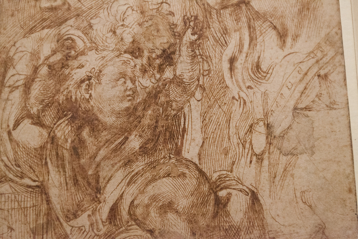 mirena-rhee-michelangelo-drawings-at-the-met_36