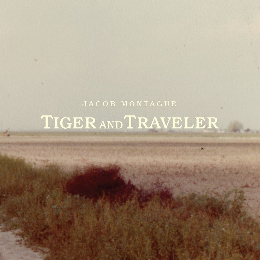 Tiger and Traveller.jpg