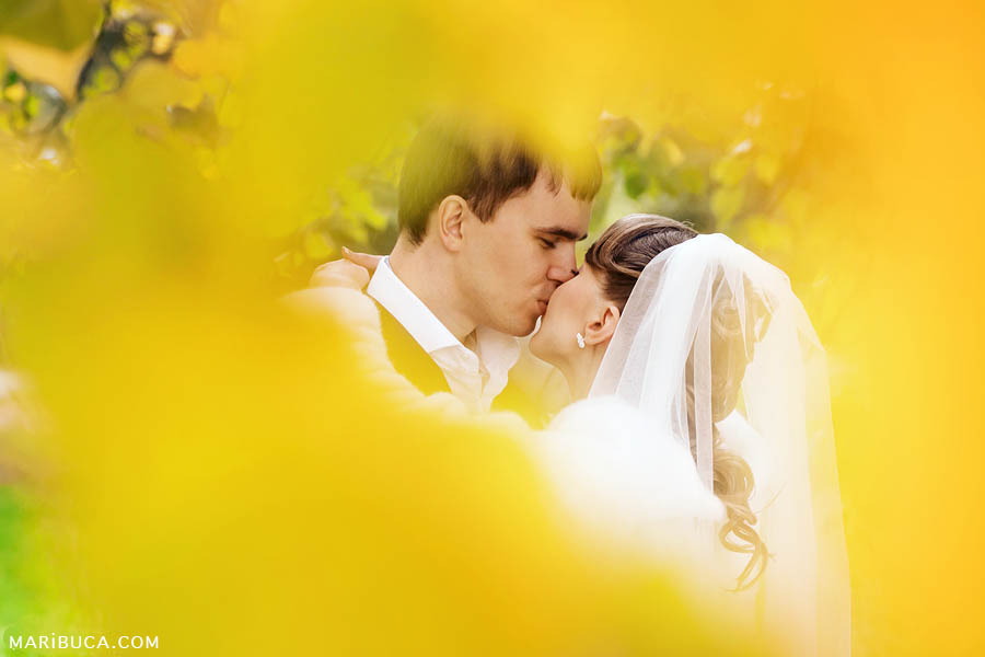 bride and groom in the park against the background of yellow foliage kiss each other.