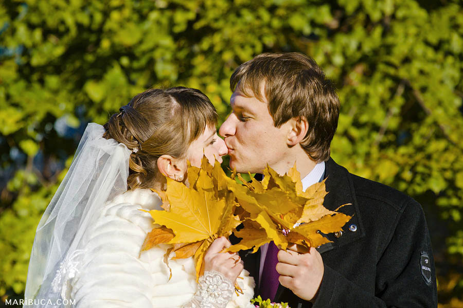 Bride and groom close their kiss by yellow maples on a background of green trees