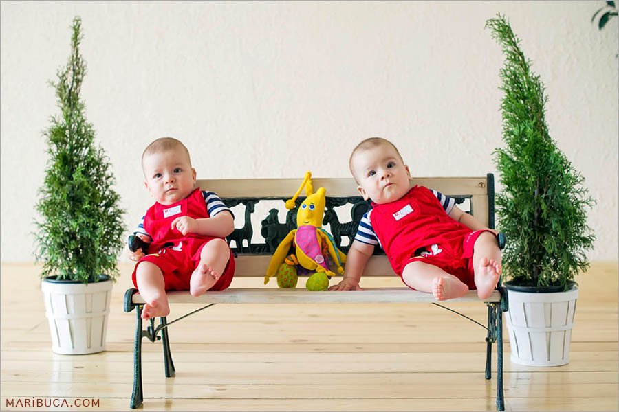 8 month old twin boys in red jumpsuits are sitting on a bench and on each side are green decorative Christmas trees in beige background