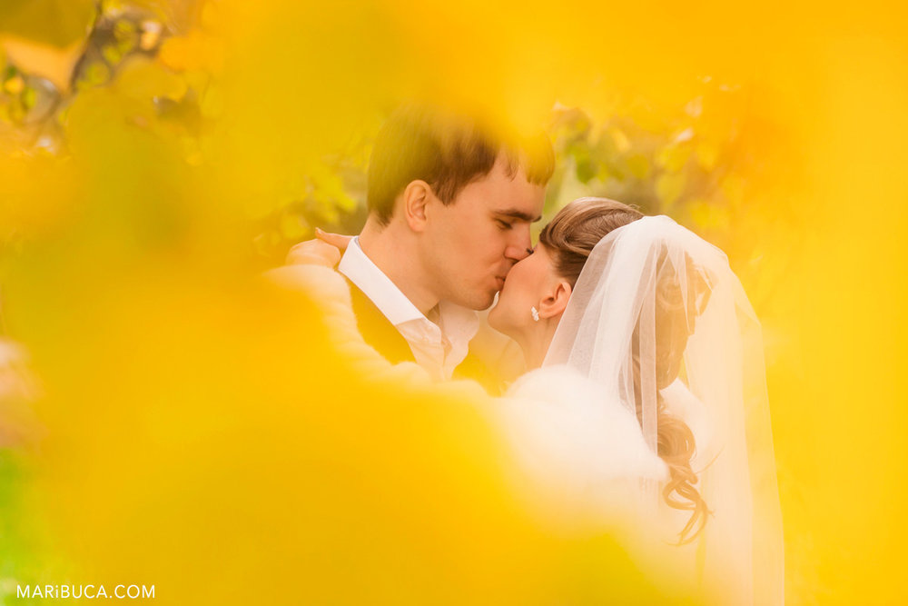 29__29-wedding-kiss-fall-love-palo-alto-california.jpg