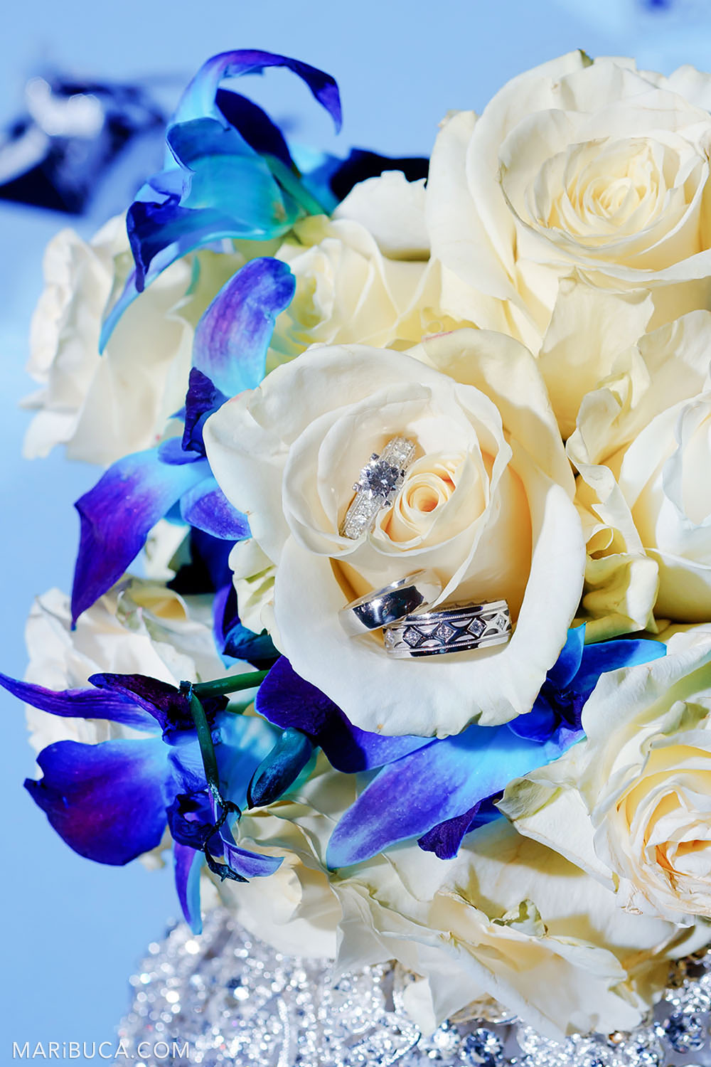 Wedding rings and a pre-wedding ring lie in the petals of white roses surrounded by blue flowers and a light blue background.