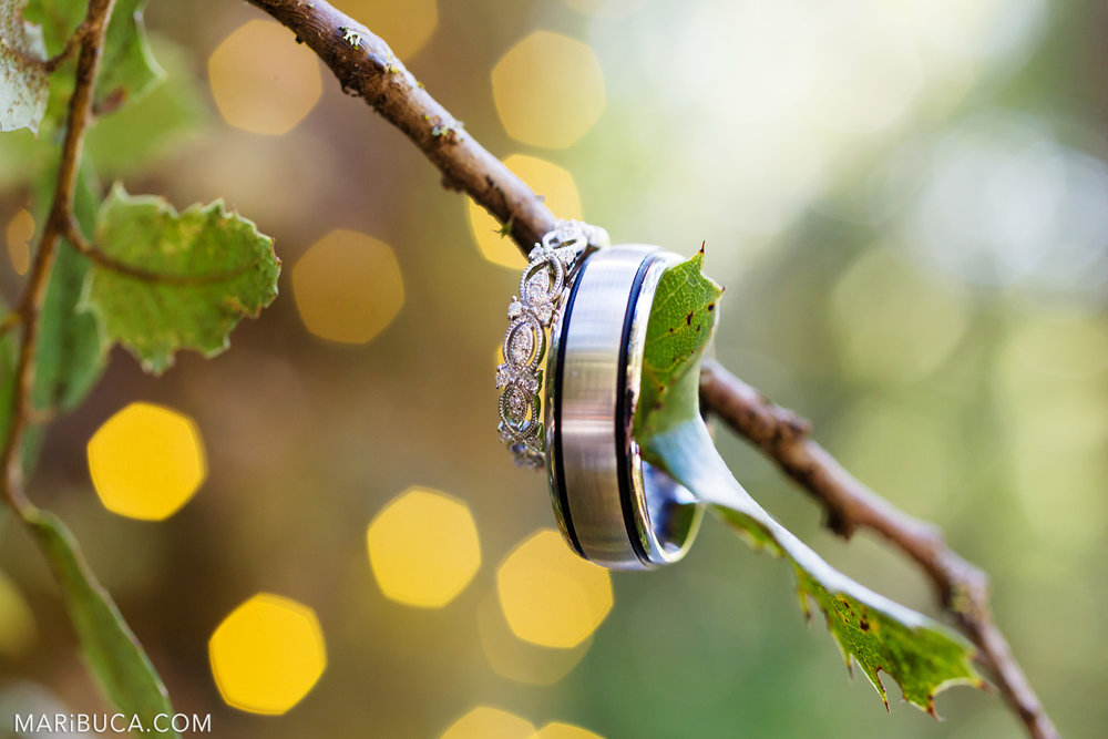 Adorable yellow lights in the Saratoga Springs Venue and example of the wedding rings