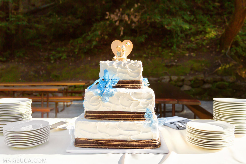 Wedding cake with light blue butterflies in the Saratoga Springs Wedding