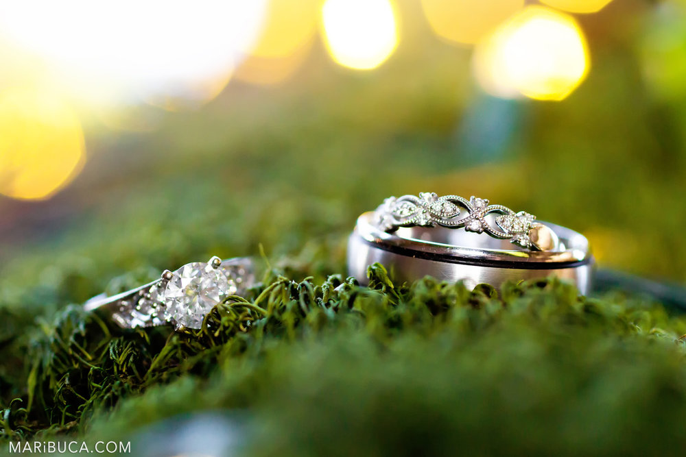 Wedding rings lies in the green tree surrounded yellow lights in the Saratoga Springs Wedding