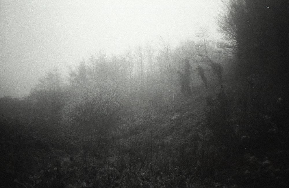 Swansea-2.jpg