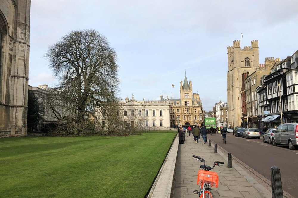 The Old Schools, Senate House, Gonville and Caius College, and Great St Mary's Church from King's Parade, Cambridge