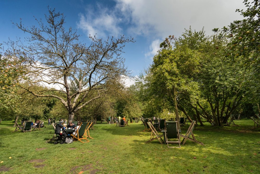 Tea in the Orchard, Grantchester