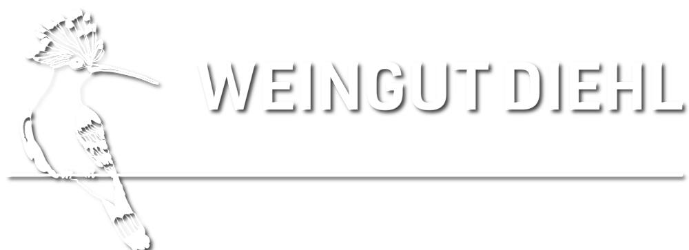 WiedehopfLinieFlaecheWeingut_weiss_schatten_Zeichenfläche 1.png