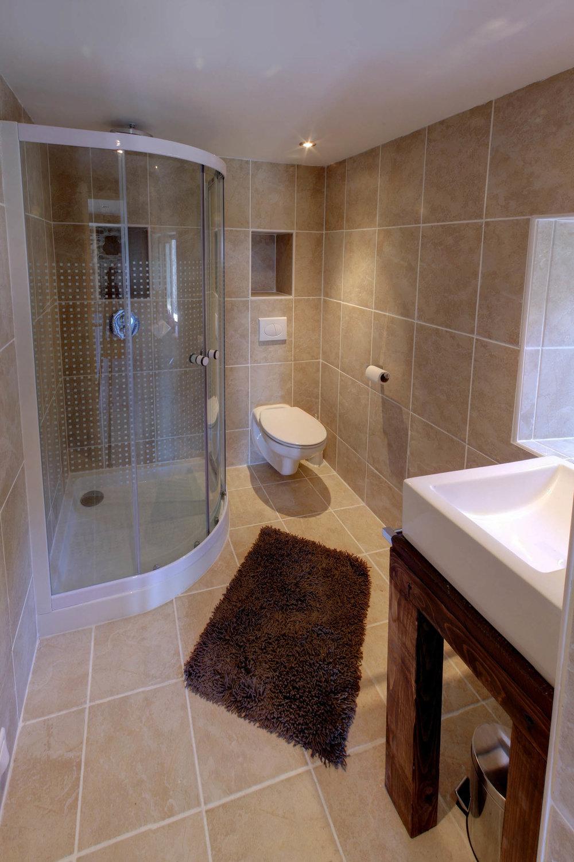 The elegant ground floor shower room