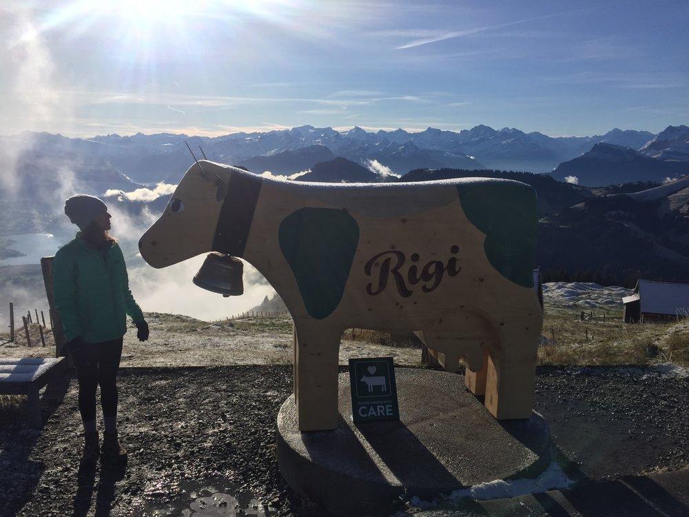 Mt. Rigi Summit