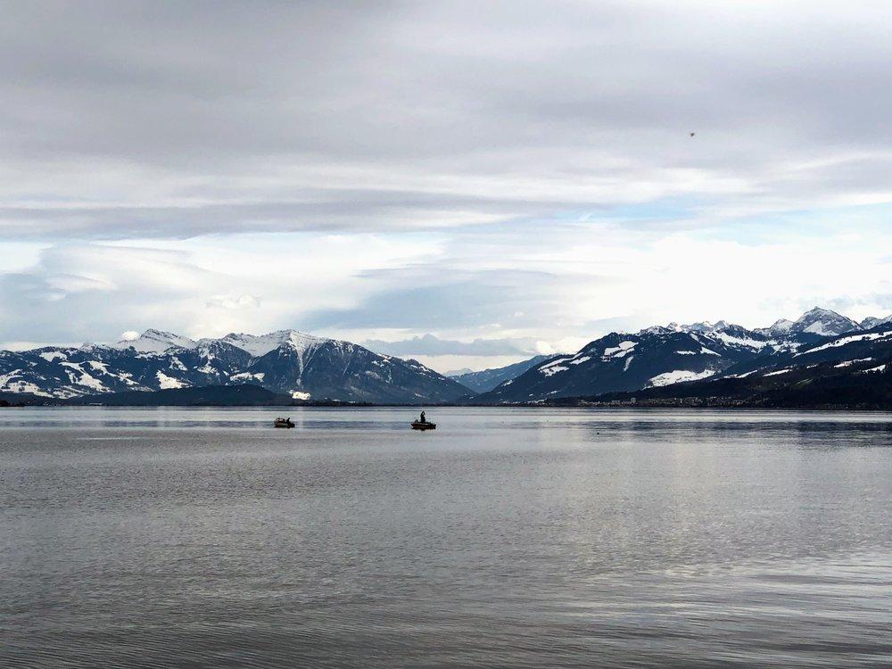 View of Lake Zurich from Horgen.jpg