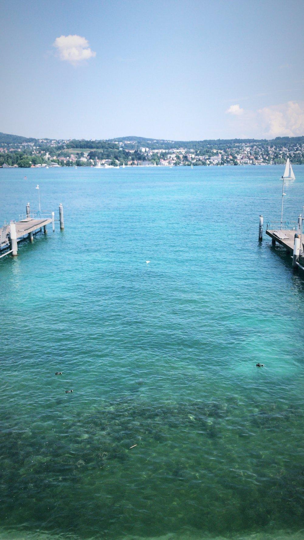 Lake Zurich in the summer