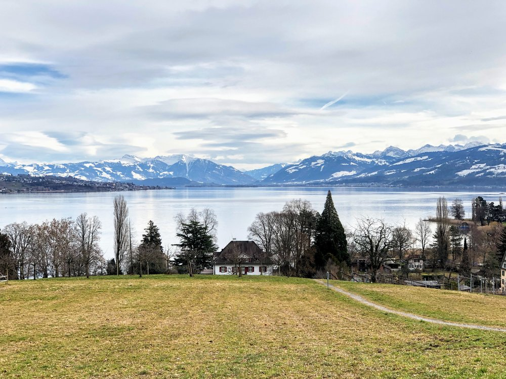 Lake Zurich from Halbinsel Au