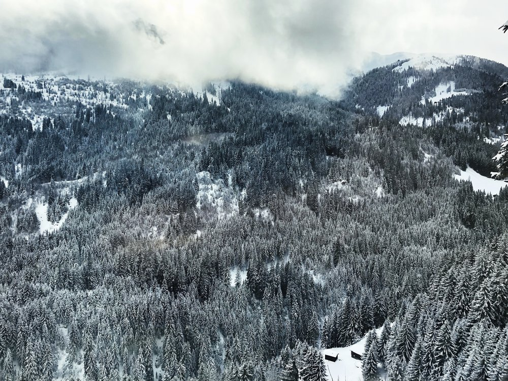 View from Glacier Express