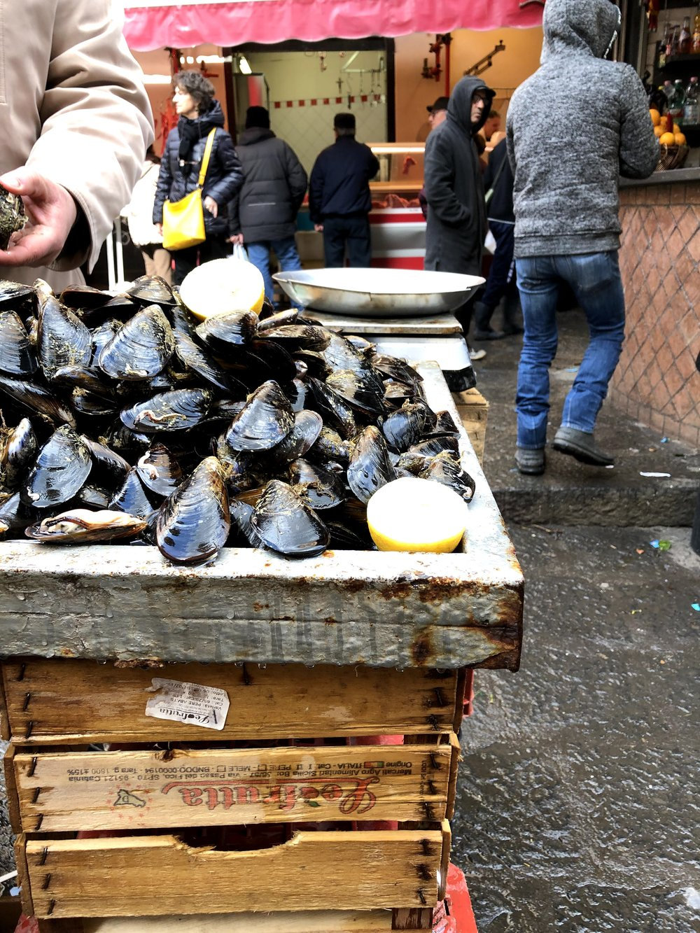 Fresh oysters at the fish market in Catania, Sicily