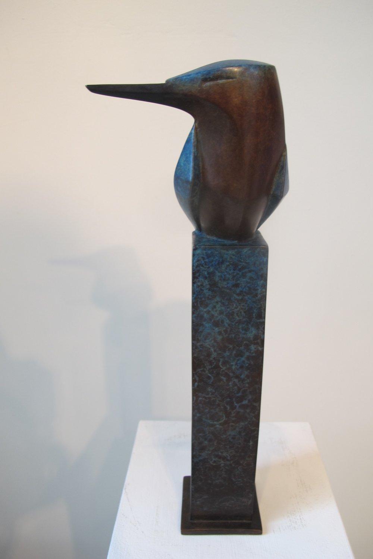 Kingfisher bronze bb front.jpg
