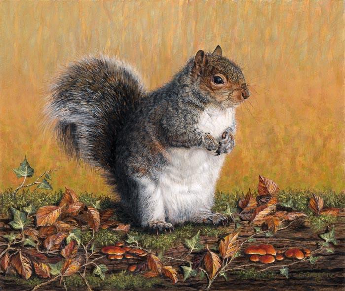 Elizabeth Sweet - Indian Summer Days (Grey Squirrel)