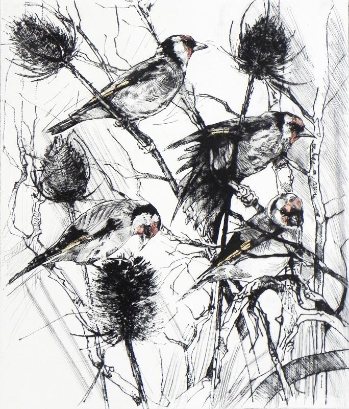 Emerson Mayes - Four Feeding Goldfinches