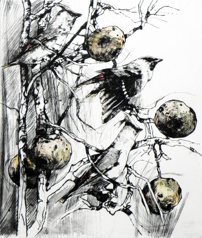 Emerson Mayes - Wandering Winter Waxwings