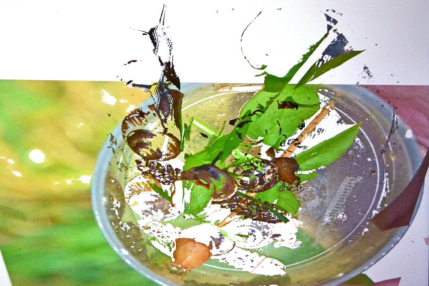 Julie Folds - Snails on a Plate