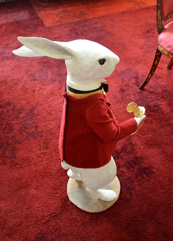 Nicky Clacy - White Rabbit