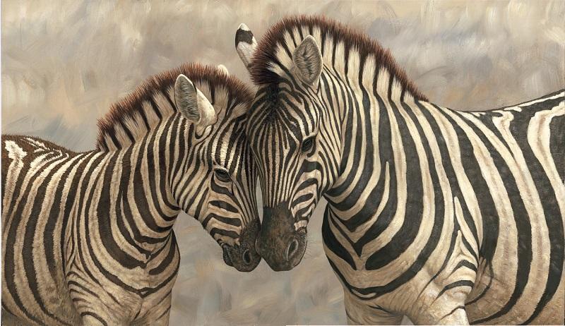 Robert Fuller - Zebra with Young