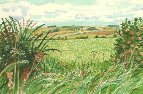 David Hockney - Gap in the Hedgrow