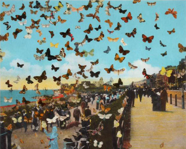 Peter Blake - The Butterfly Man in Eastbourne