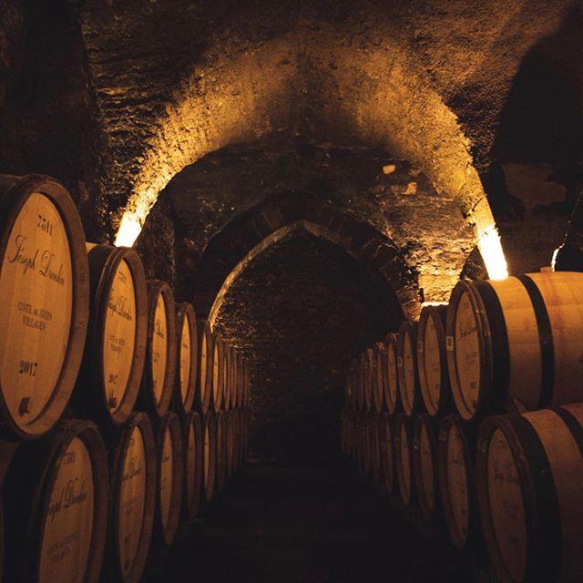 Tournage ce matin au cœur de l'histoire de Beaune dans les caves de la @maisonjosephdrouhin  #cave #beaune #bourgogne