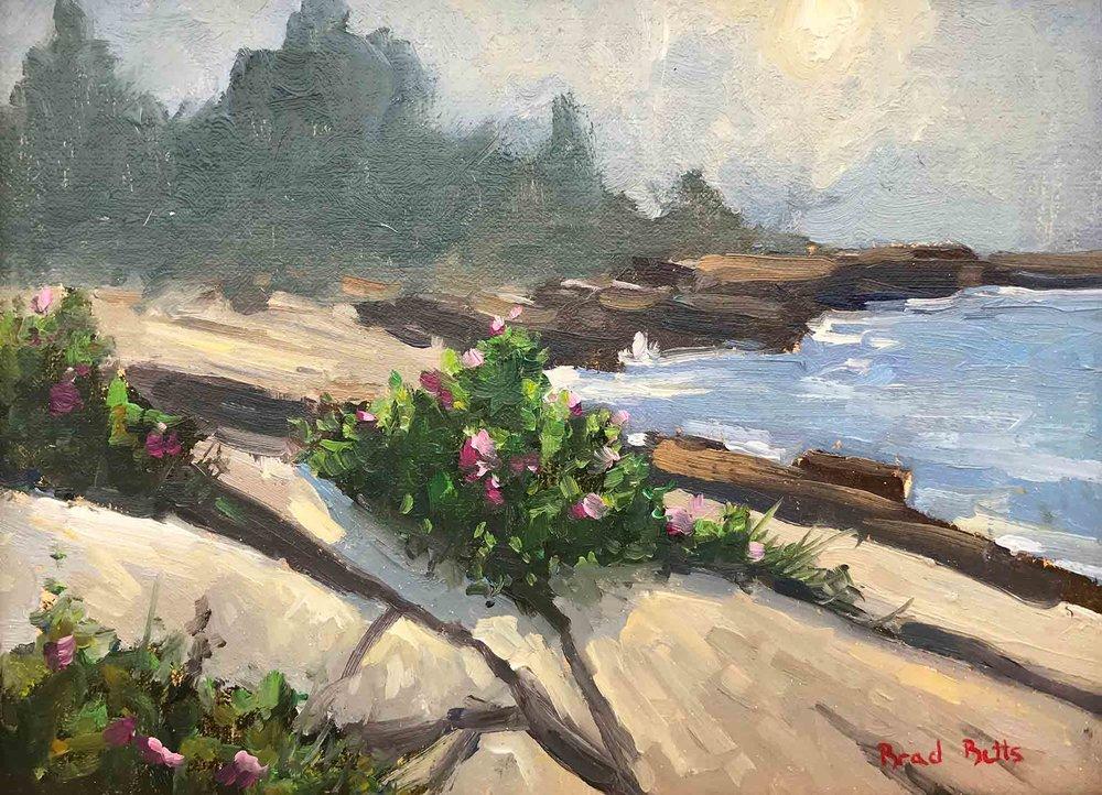 Beach-Roses-in-Fog-6x8_web.jpg