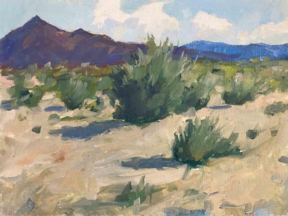 Crossing-the-Desert-en-plein-air-8x10_web.jpg