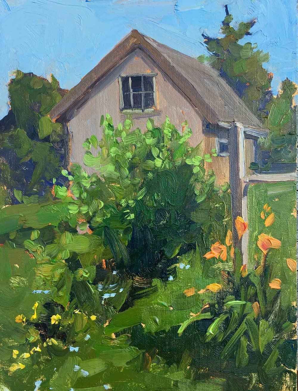 Lilies-and-Shed_web.jpg