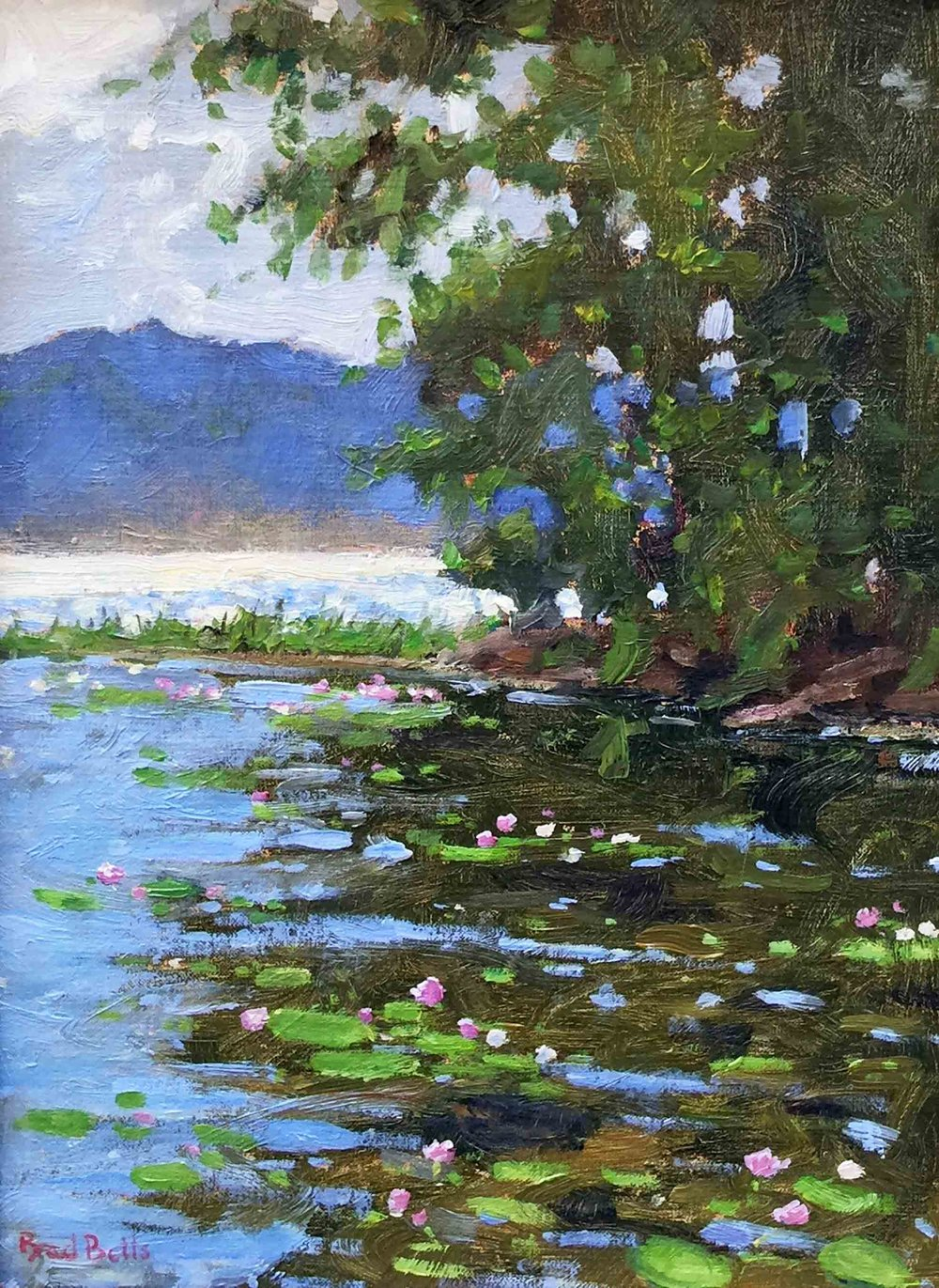 Lilies-on-Long-Pond_web.jpg
