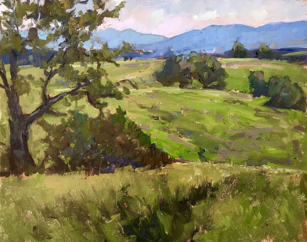 Santa Rosa Ecological Reserve, 11x14 en plein air oil painting by Brad Betts